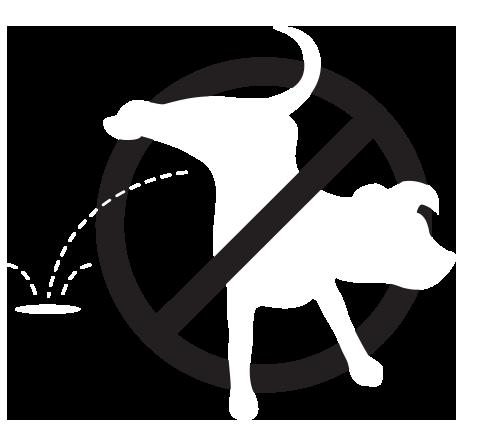 k9zap icon